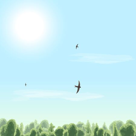 Summer time. Sunny day. Sun, clouds, bird, swift, sky, forest. Vector illustration.