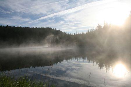 cicuta: Hemlock ma�ana en el Lago