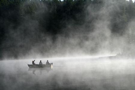 cicuta: Pesca en la niebla