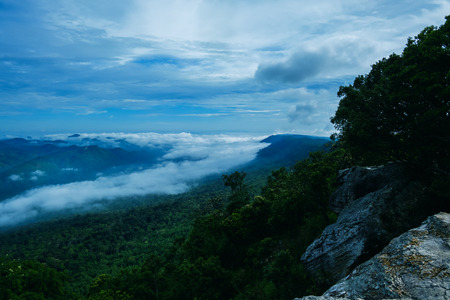 View of mountain and mist with trees and stone, View point of Pa Hin Ngam National Park. Chaiyaphum Thailand.