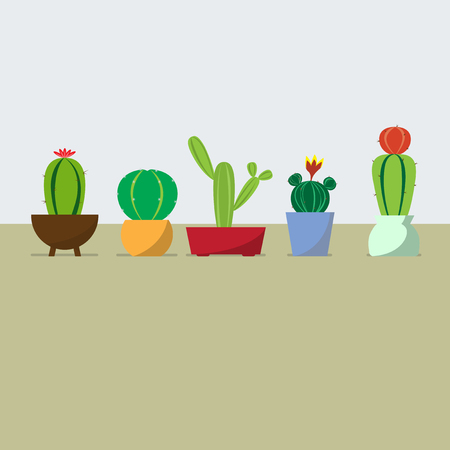 five vector cactus in the pots on pastel background