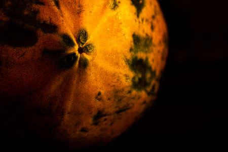 Papaya fruit isolated on black background. Use for fruit concept. Selective focus