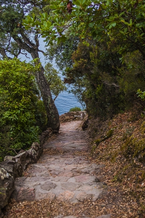 sailling: way to the sea Stock Photo
