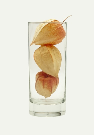 three physalis in the glass