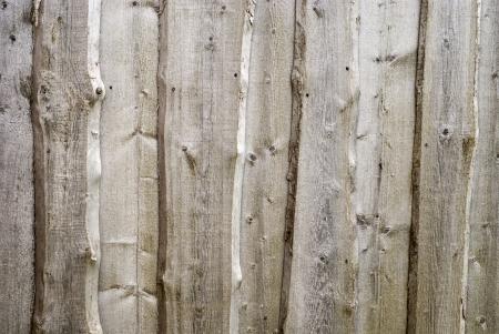 wood texture of barn wall photo