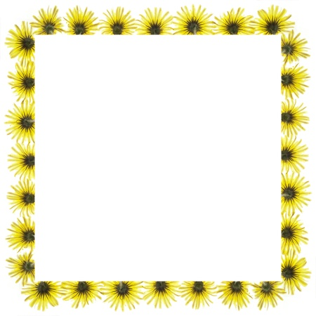 blossom frame