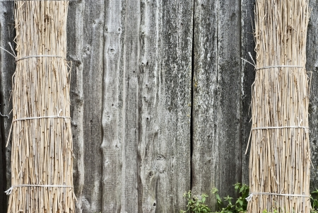 Sheaf of straw is propped against a wall at the left and right side Stock Photo - 16719806