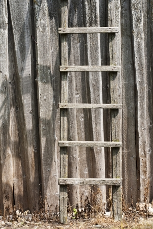 wooden ladder near the plank wall