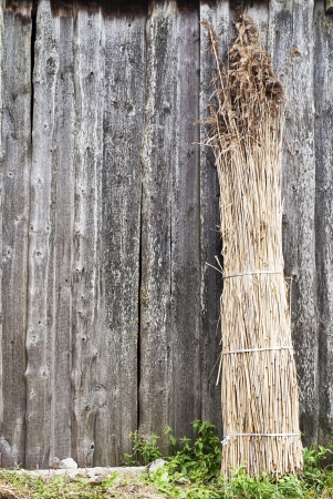 Sheaf of straw is propped against a wall at the right side photo