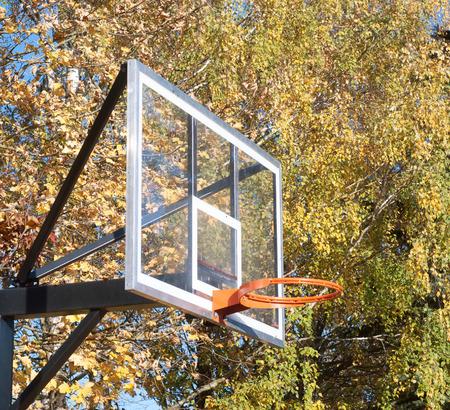 Conseil de basket-ball � l'automne, sans filet, automne fond