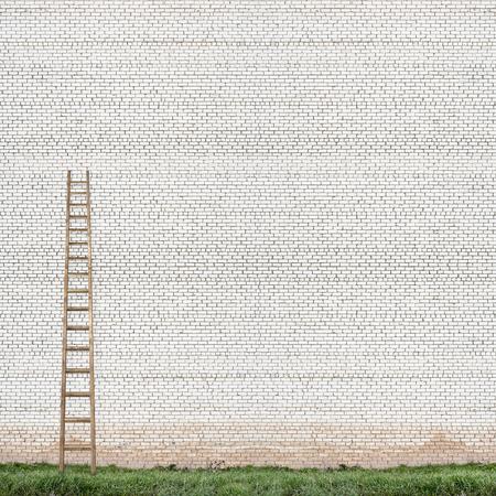 backstairs: enorme muro di mattoni bianchi con una scala di legno e sfondo verde erba
