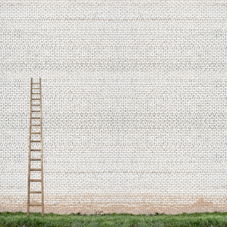 rungs: huge white brick wall with a wooden ladder and green grass background