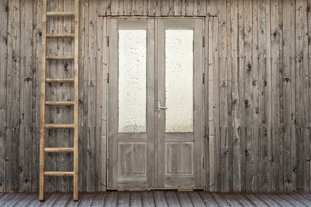 backstairs: door with frosty window and ladder near the plank house wall background