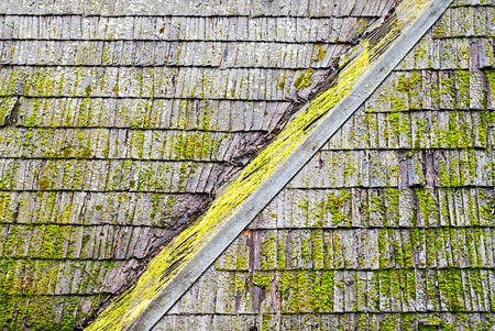 damaged roof: Wooden shingle roof with molds and algaes on the surface Stock Photo