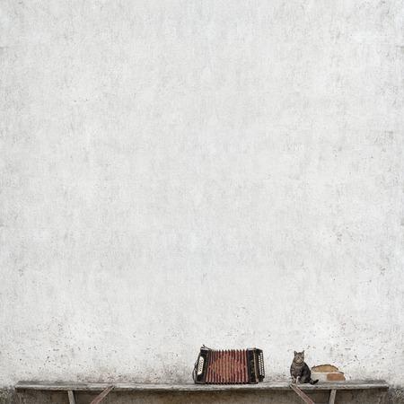 accord�on et chat tigr� assis sur le banc pr�s de l'immense mur blanc Banque d'images
