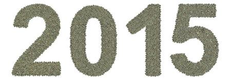 Num�ro 2015 faite de vieilles et sales microprocesseurs, nouvelle ann�e de la ch�vre