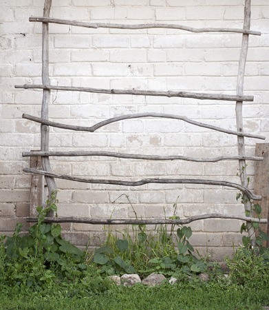 backstairs: ladder for creeper plants near the wall ladder made of crooked dry tree branches