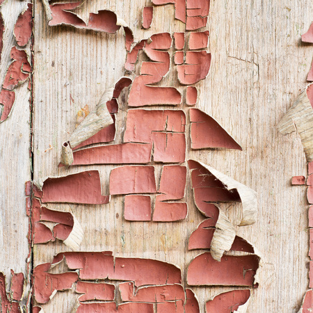 squalid: old painted wooden plank, part of a wall
