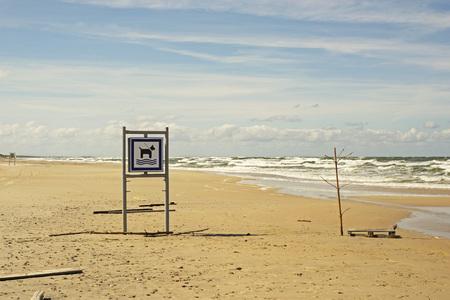 Dog friendly beach. Sunny and windy day. Wavy sea. Banco de Imagens