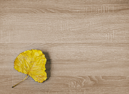 Yellow dry leaf on brown wooden texture background Banco de Imagens