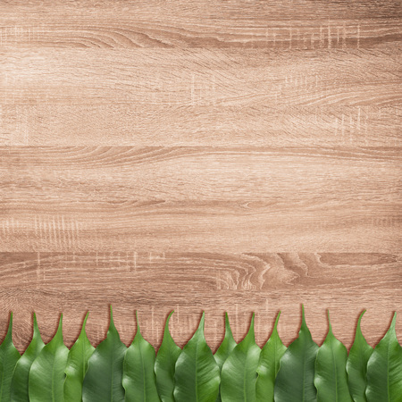 Ficus leaves on the brown wooden texture background