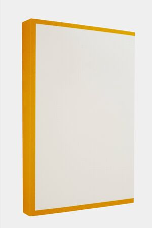 White book with yellow spine isolated on white background