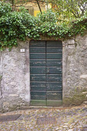 Green creeper on the brick stucco cracked wall with green door. Standard-Bild - 137723369