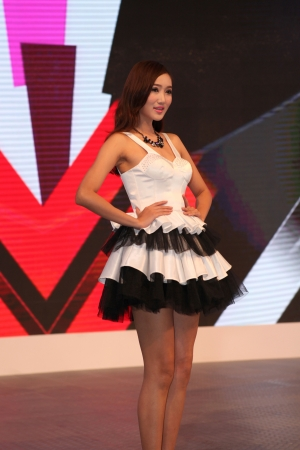 17th: 2013 17th Shenzhen-Hong Kong-Macao International Auto Show Girl