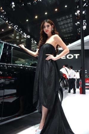 hight tech: 2013 17th Shenzhen-Hong Kong-Macao International Auto Show Girl