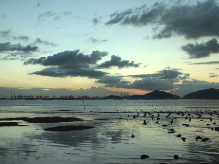 Ha Pak Nai at Sunset, Yuen Long, Hong Kong photo