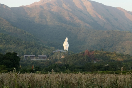 sutras: The statue of a Guanyin in a Tsz Shan Monastery of Tai Po, Hong Kong