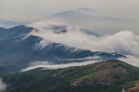 Waves of Fog in Tai Mo Shan photo