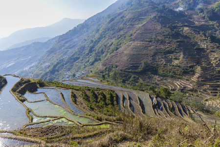 ini: Terraced rice fields ini Yuanyang County