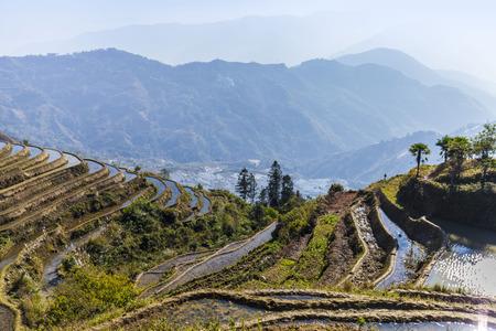 terraced: Terraced rice fields ini Yuanyang County
