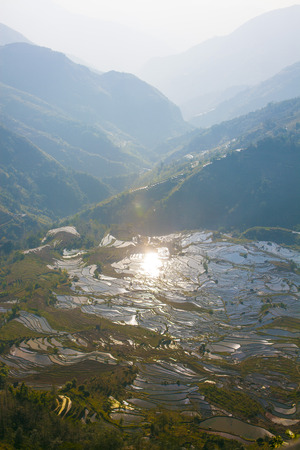 rice fields: Terraced rice fields in Laohuzui, Yuanyang County