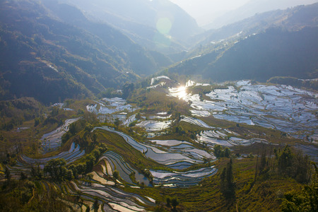 yuanyang: Terraced rice fields in Laohuzui, Yuanyang County