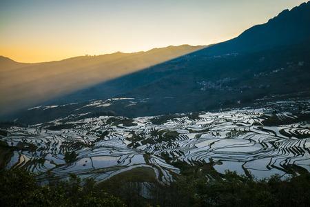 terraced: Sunrise of terraced rice fields in Laohuzui Yuanyang County