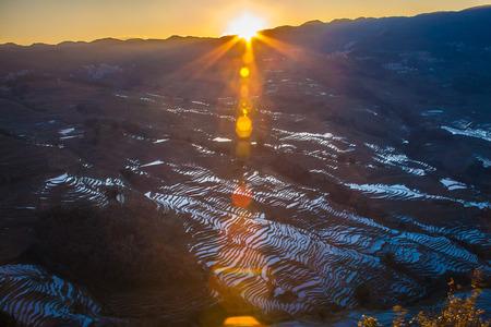 terraced: Terraced rice fields in Bada Yuanyang County