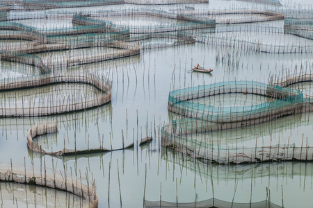 house float on water: Fish farms at Xiapu