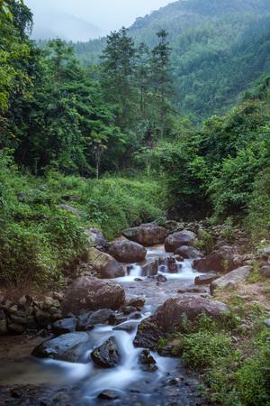quickness: River at Guangdong