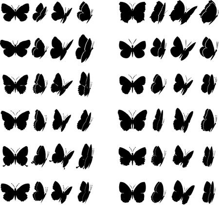 Twelve butterflies collection. Each different in four various views. Within all shapes, in file, are included closed paths to give colour Illustration