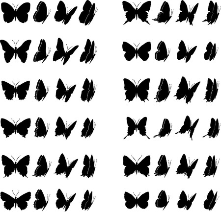 all in: Twelve butterflies collection. Each different in four various views. Within all shapes, in file, are included closed paths to give colour Illustration
