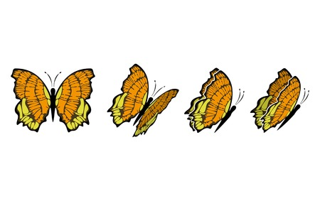 the same butterfly in four different sights Vector