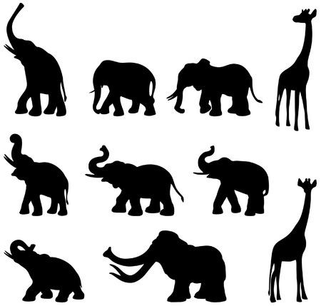 Elefants, mammoth en giraffe zwarte en witte schaduwen Vector Illustratie