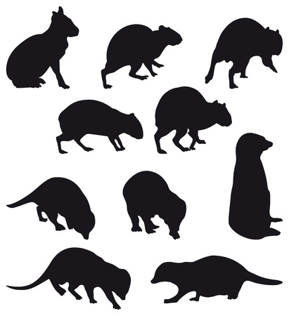 carnivore: Agoutis and Suricate: big rodent and little carnivore black silhouettes