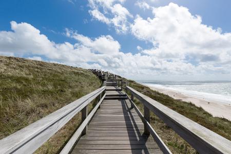 dunes: Walking through the Dunes