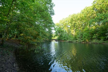 lakeview: Lakeview Bridge