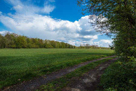 hiking trail: Hiking trail in Krefeld Stock Photo