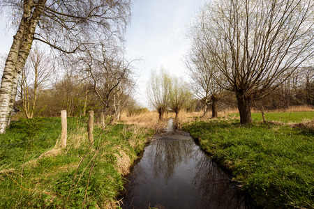 Niepkuhlen Nature Reserve in Krefeld  Germany Stock Photo