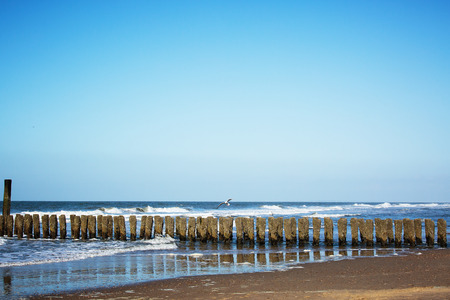 netherlands: Domburg Beach Impression  Netherlands